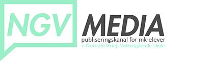 NGVmediaLogol2019 HeaderImageLITEN kopi